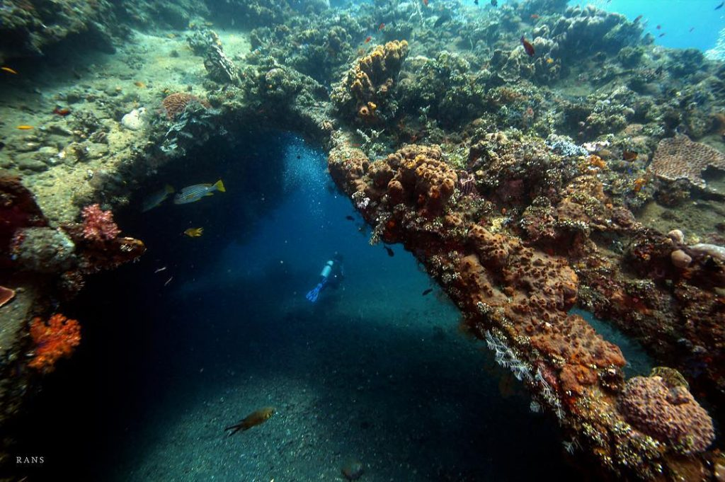 Getting to Know More About Dive Sites in Bali!