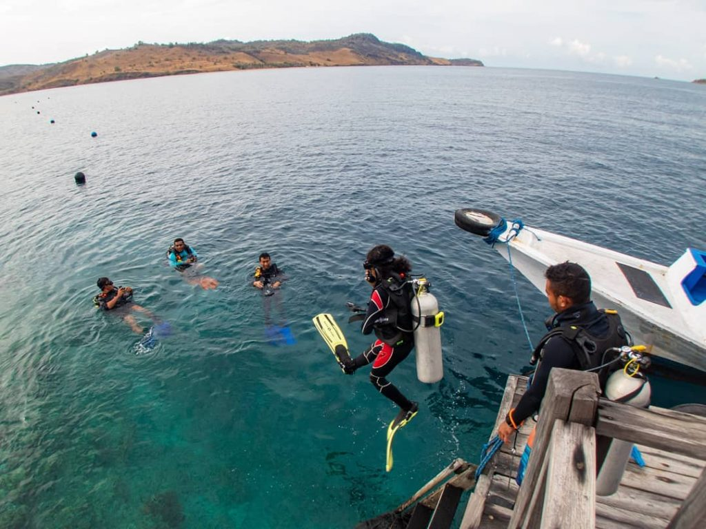 Diving in Komodo: Day Trip or Liveaboard